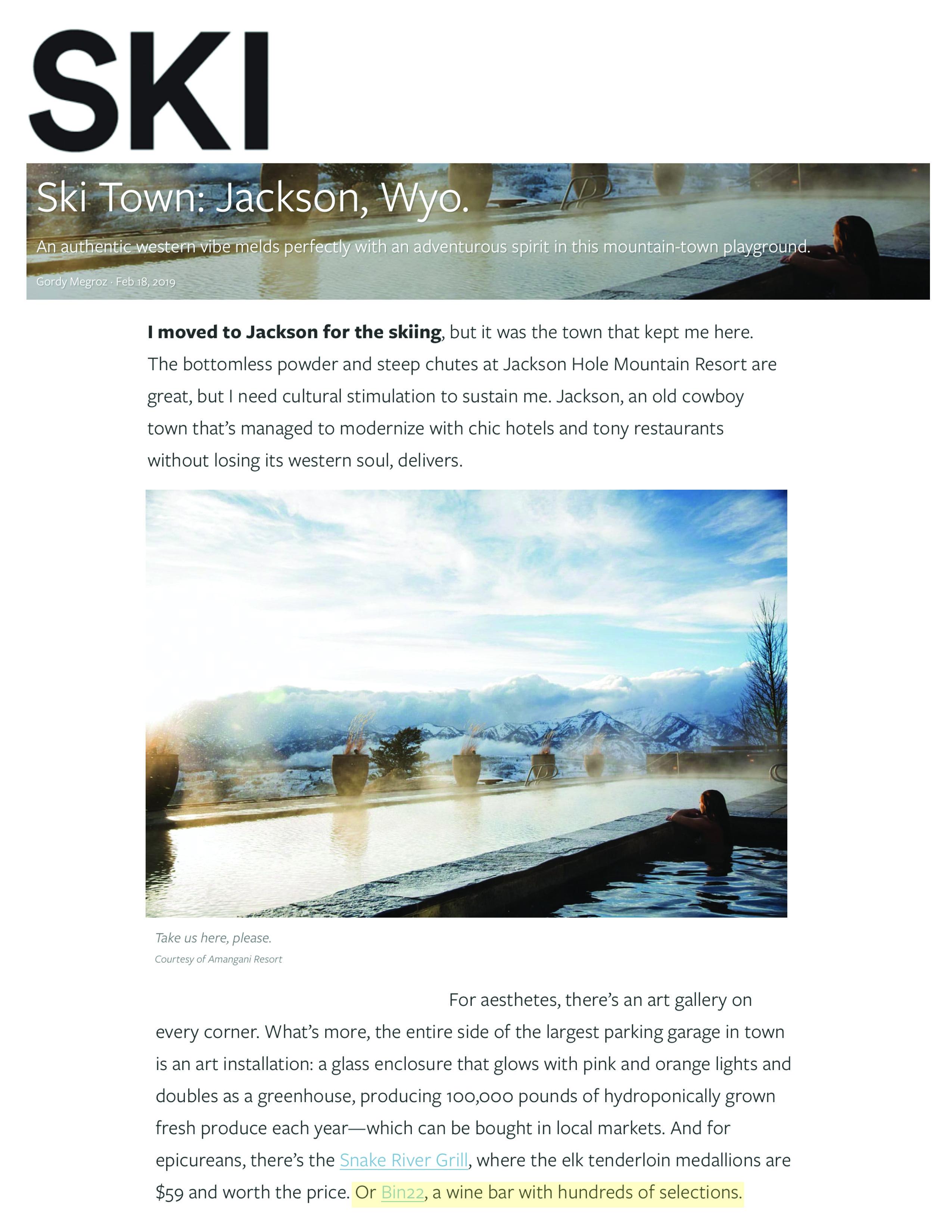 Press item at Bin 22 - Ski Magazine
